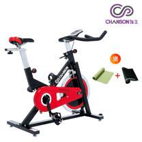 飛輪有氧健身車CS-3001R