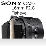 SONY 16mm F2.8 Fisheye 魚眼鏡頭(公司貨)-加送強力吹球+拭鏡筆+擦拭布