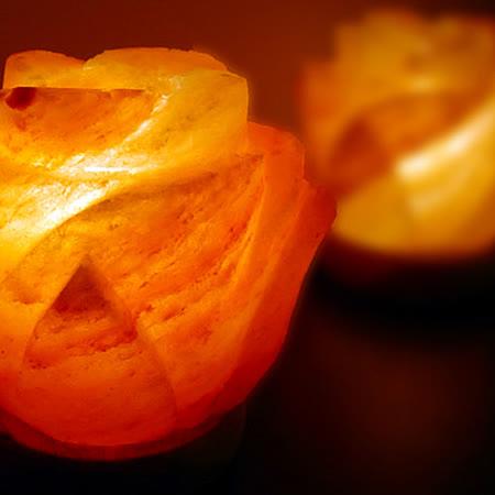 【Naluxe】開運水晶鹽燈-花開富貴對燈(1對2入)
