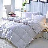 《五星級飯店指定專用》100%天然水鳥羽絨被組(1被2枕)