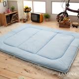 【LAMINA】防蟎抗菌日式床墊-單人
