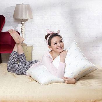 金洛貝達 防蹣抗菌枕頭(45*75cm)