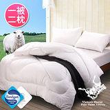 【POLO】台灣精製高密度防蹣抗菌潔淨羊毛被-雙人(含2枕)