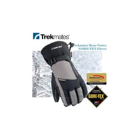 【英國Trekmates】GORE-TEX® + Primaloft Glove 男款防水透氣保暖手套/GT06 黑/灰