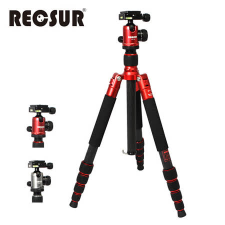 RECSUR 銳攝 台腳5號 RS-3255C+VQ-20 五節反折式碳纖維腳架