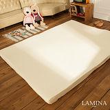 LAMINA  健康舒眠平面記憶床墊(6CM)-雙人