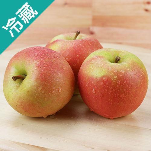 TOKI蘋果40
