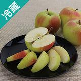 日本名月蘋果 40