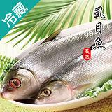 虱目魚1尾(500~600g/尾)