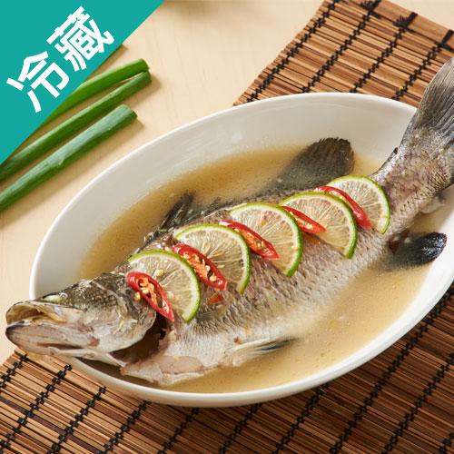 金目鱸魚1尾^(500^~600g尾^)