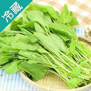 產銷履歷菠菜1包(250g±5%/包)