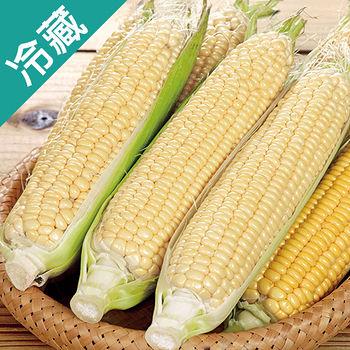 產銷履歷水果玉米1包(400g±5%/包)