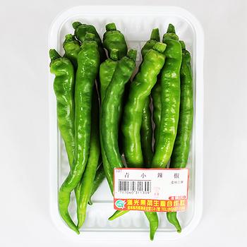 青小辣椒1盒(150g±5%/盒)