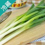 台灣青蔥1包(200g±5%/包)