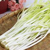 韭菜黃1包(250g±5%/包)