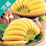 高雄旗山香蕉/3斤