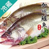 加州鱸魚2尾(500~600g/尾)