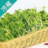 豌豆嬰2盒(150g/盒)