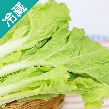 產銷履歷小白菜2袋(250G/袋)