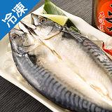 整尾薄鹽挪威鯖魚一夜干10尾 (280~320g/尾)