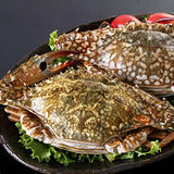 【海之醇】斯里蘭卡之佐渡母花蟹(5支)含運