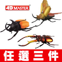 《4D MASTER》 - 甲蟲系列 -  任選三件自由配