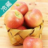 智利富士蘋果125
