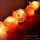 [Naluxe] 義大利設計水晶鹽燈均一價