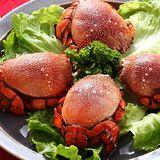 【上野物產】澳洲野生熟凍公旭蟹12隻(150g土30%/隻)