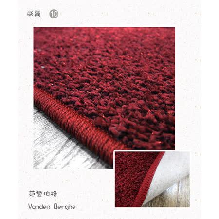 【范登伯格】維爾斯紅色金蔥光澤風格獨特長毛地毯-160X240cm