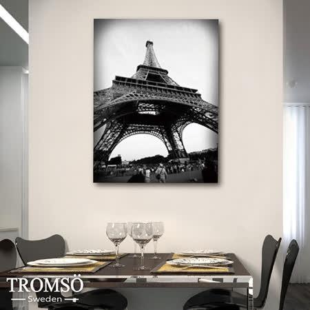 TROMSO時尚無框畫/艾菲爾鐵塔