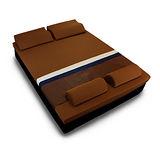 [黎安思-Zean`s] 頂級竹炭感溫釋壓記憶床墊(加大8cm)咖啡金