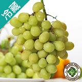 智利綠葡萄1斤(600g±5%/斤)