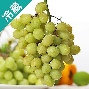 美國加州綠葡萄1斤(600g±5%/斤)
