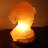 【Naluxe】義大利設計水晶鹽燈-微笑海豚