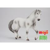 【MOJO FUN 動物模型】動物星球頻道獨家授權 - 阿帕魯薩馬