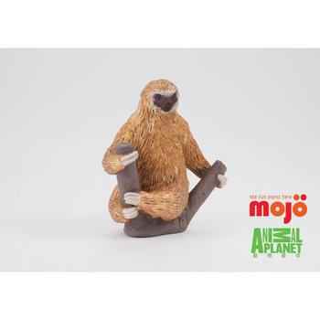 【MOJO FUN 動物模型】動物星球頻道獨家授權 - 二趾樹懶