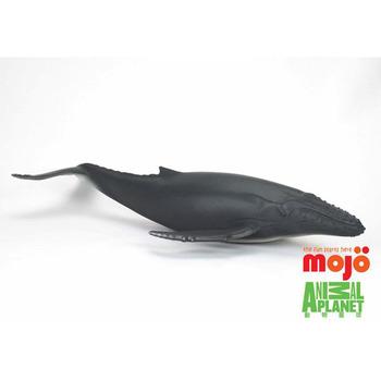 【MOJO FUN 動物模型】動物星球頻道獨家授權 - 座頭鯨