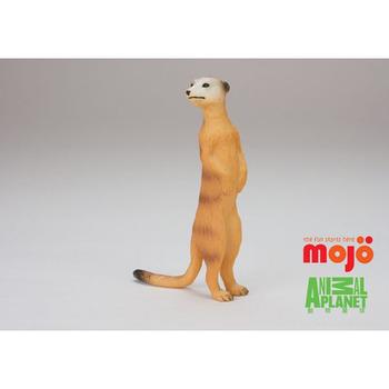 【MOJO FUN 動物模型】動物星球頻道獨家授權 - 狐?
