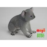 【MOJO FUN 動物模型】動物星球頻道獨家授權 - 無尾熊