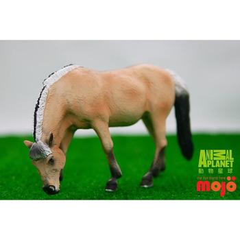 【MOJO FUN 動物模型】動物星球頻道獨家授權 - 母峽灣馬
