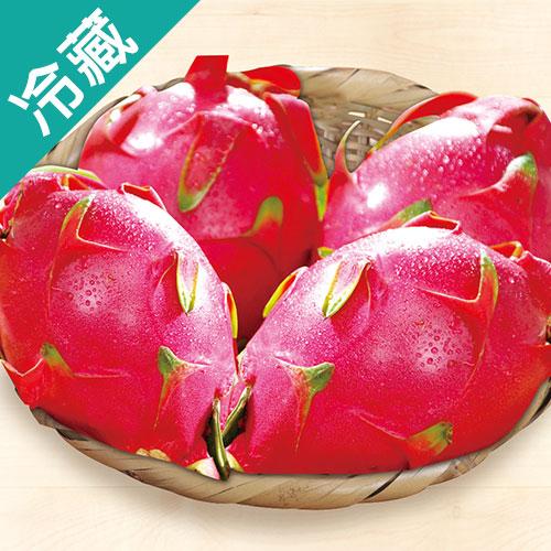 火龍果3粒 白肉  400g±10%粒