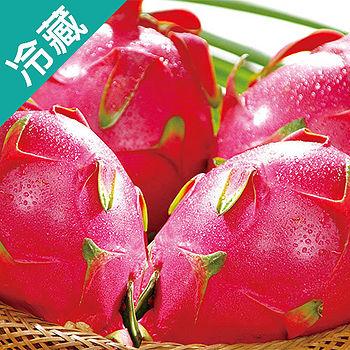 火龍果6粒(紅肉)(600g±10%/粒)