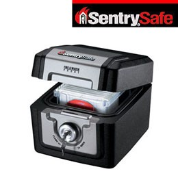 SENTRYSAFE防水數位文件箱(QA0110)