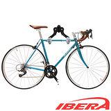 IBERA 自行車專用20-29吋停車壁掛架