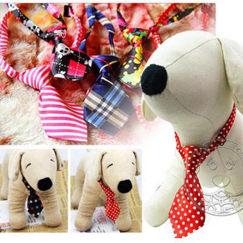 寵物卡哇依專用配飾好禮儀領結領帶 (圖樣隨機出貨)