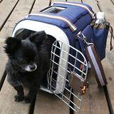 IRIS《多功能-小型犬》手提/側背外出籠 SHC-400