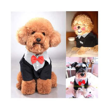 【網購】gohappy 線上快樂購DOPET《犬用服裝系列》狗狗宴會西裝效果愛 買 門市