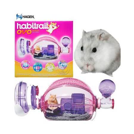 赫根HAGEN 》寵物鼠鼠籠誕生系列女孩房送鼠砂1包