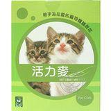 寵物野菜園活力之麥‧種植貓草 (每盒4小包,每小包50g)